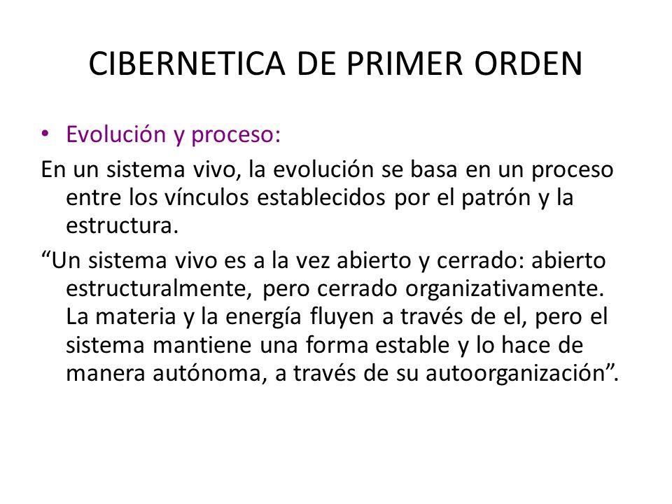 CIBERNETICA DE PRIMER ORDEN