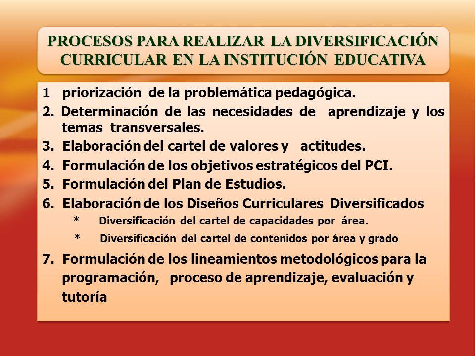 PROCESOS PARA REALIZAR LA DIVERSIFICACIÓN CURRICULAR EN LA INSTITUCIÓN EDUCATIVA