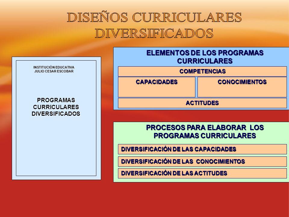 DISEÑOS CURRICULARES DIVERSIFICADOS