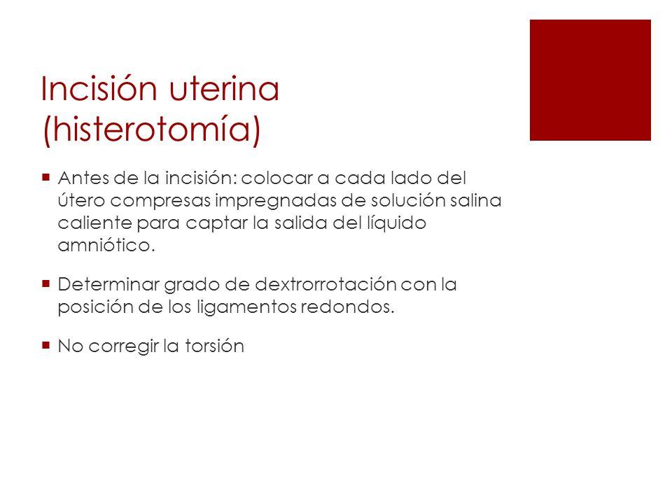 Incisión uterina (histerotomía)