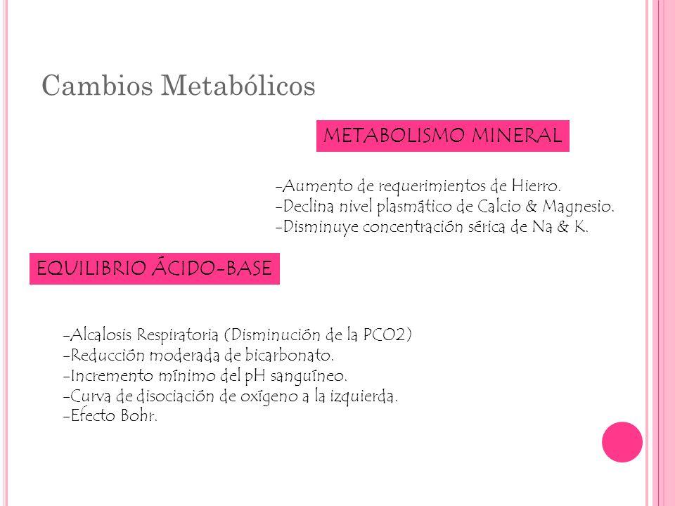 Cambios Metabólicos METABOLISMO MINERAL EQUILIBRIO ÁCIDO-BASE