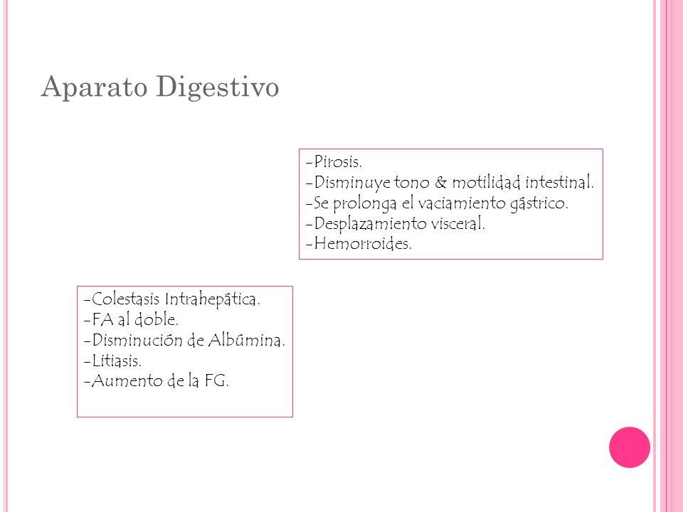 Aparato Digestivo Pirosis. Disminuye tono & motilidad intestinal.