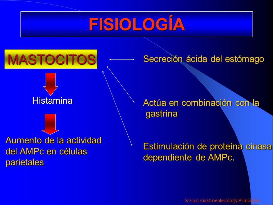 FISIOLOGÍA MASTOCITOS Secreción ácida del estómago