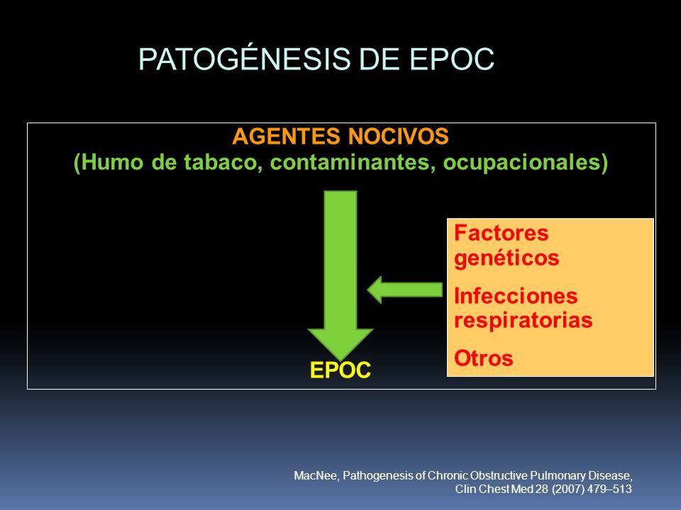 AGENTES NOCIVOS (Humo de tabaco, contaminantes, ocupacionales)