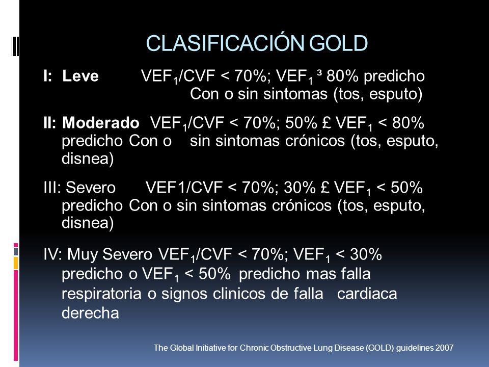 CLASIFICACIÓN GOLD