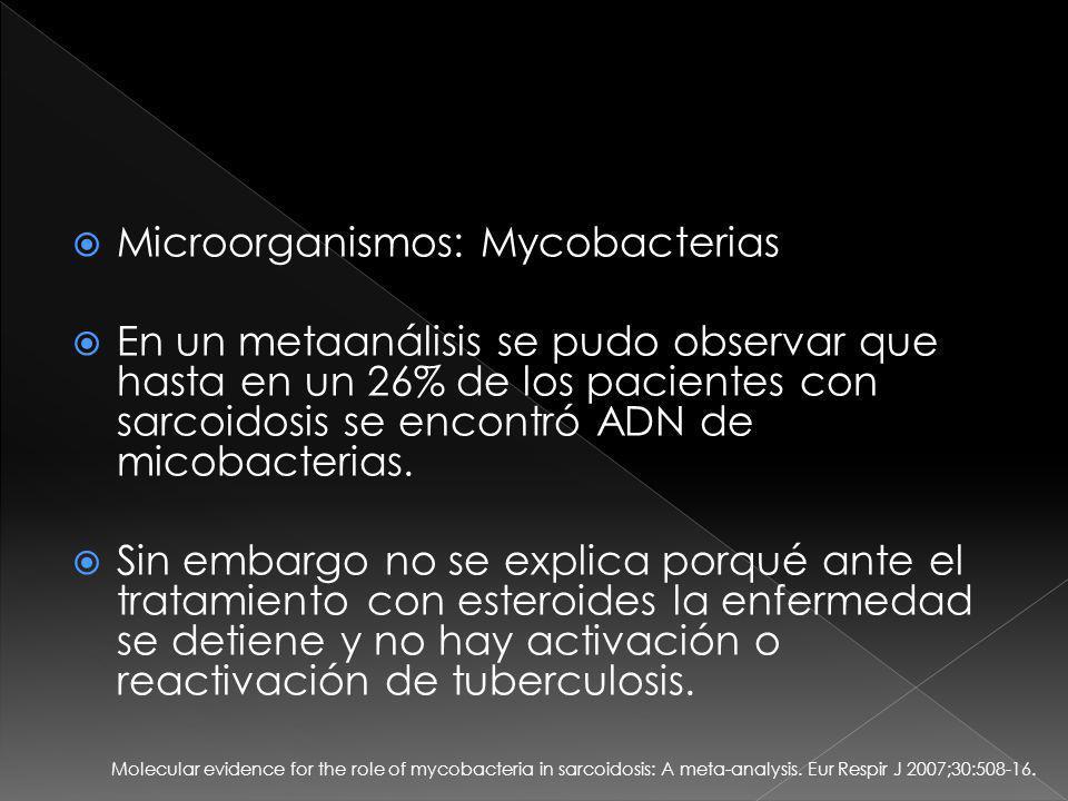 Microorganismos: Mycobacterias