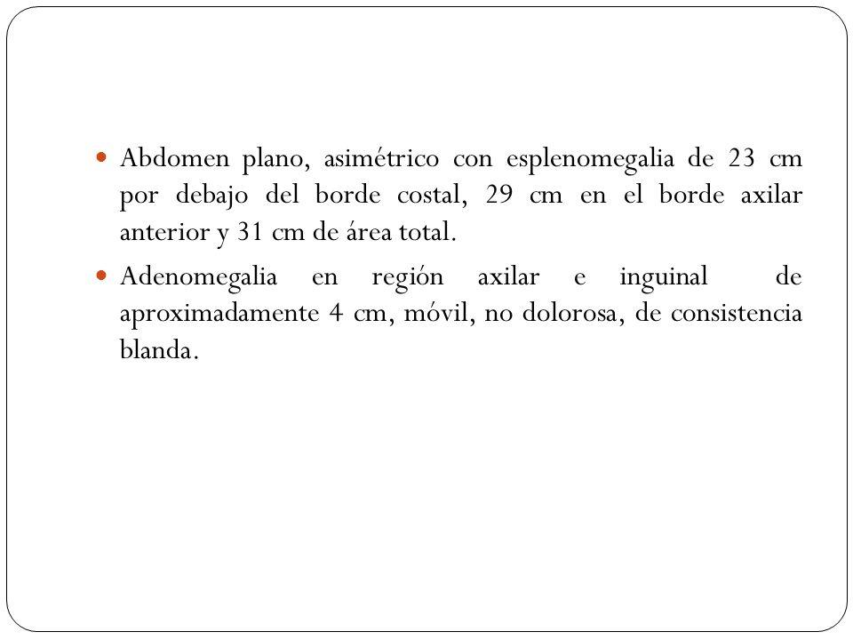Abdomen plano, asimétrico con esplenomegalia de 23 cm por debajo del borde costal, 29 cm en el borde axilar anterior y 31 cm de área total.