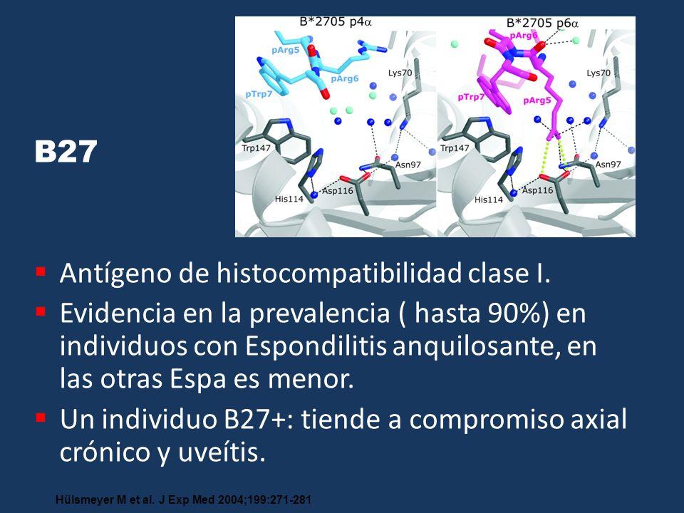 Antígeno de histocompatibilidad clase I.
