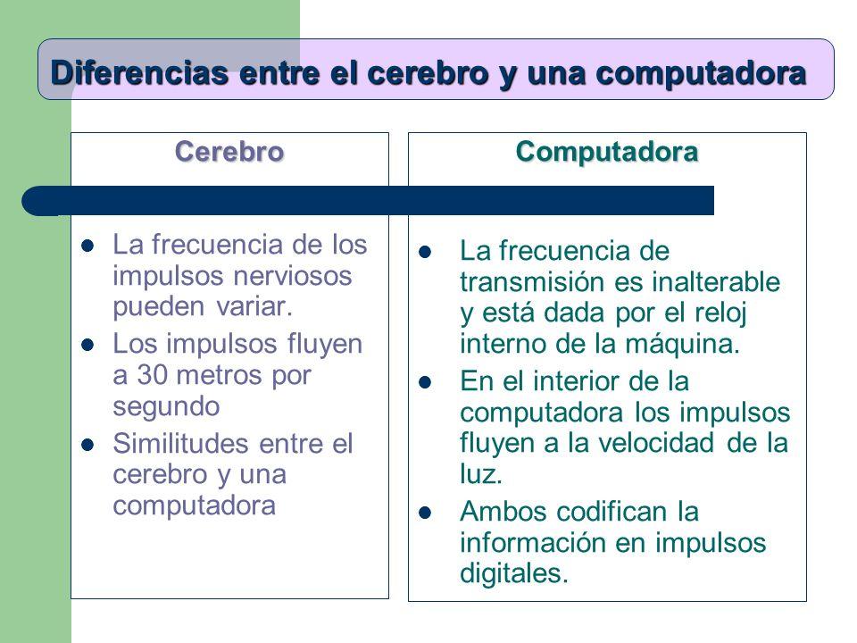 Diferencias entre el cerebro y una computadora