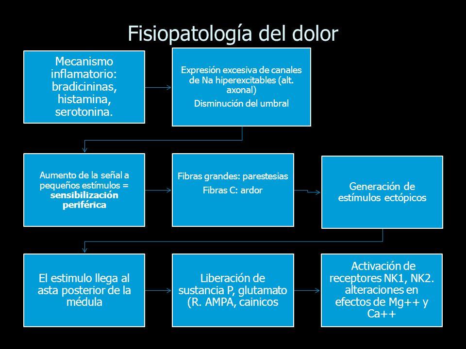 Fisiopatología del dolor