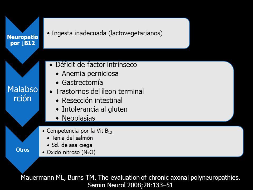 Malabsorción Déficit de factor intrínseco Anemia perniciosa