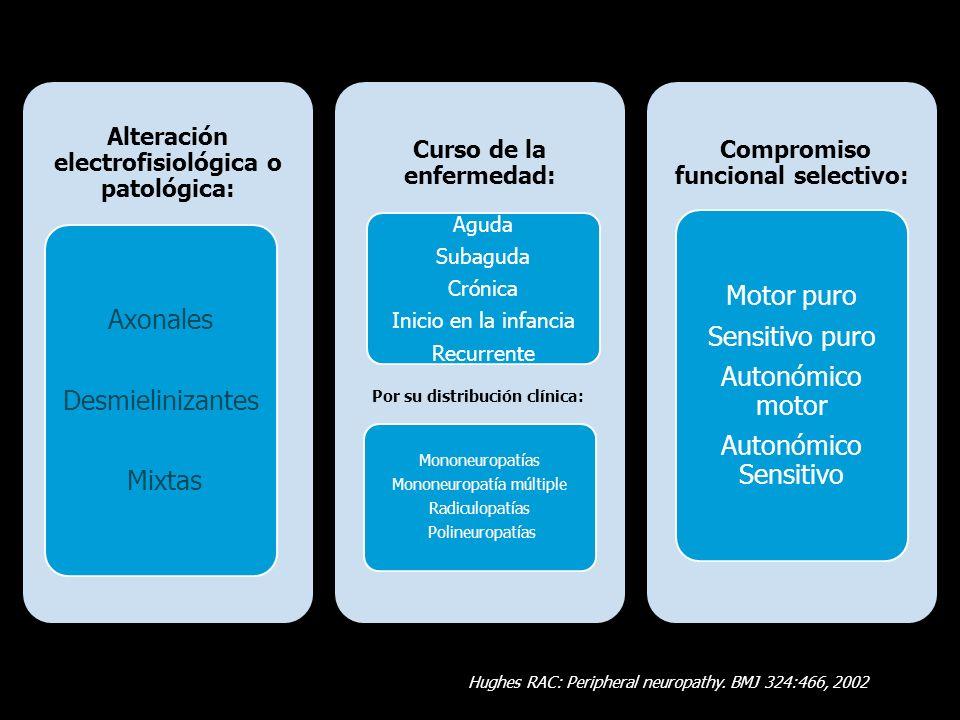 Motor puro Axonales Sensitivo puro Autonómico motor Desmielinizantes