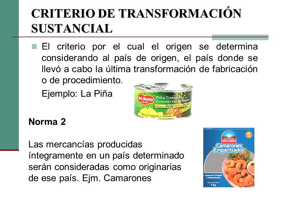 CRITERIO DE TRANSFORMACIÓN SUSTANCIAL