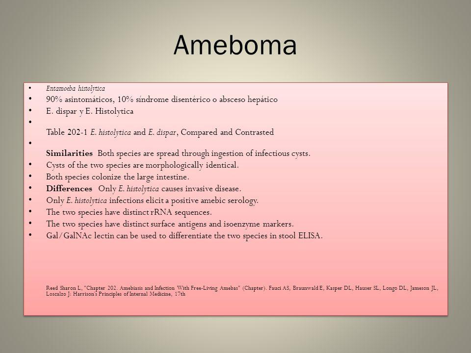 Ameboma 90% asintomáticos, 10% síndrome disentérico o absceso hepático