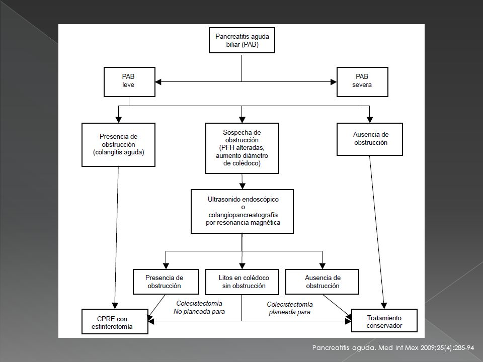 Pancreatitis aguda. Med Int Mex 2009;25(4):285-94