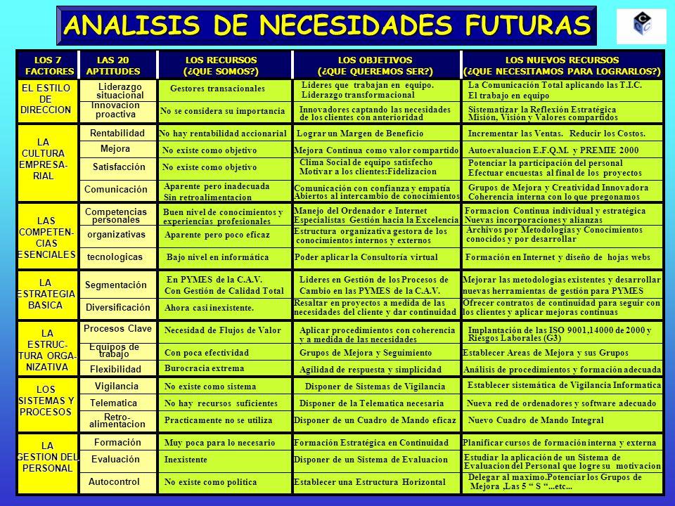 ANALISIS DE NECESIDADES FUTURAS