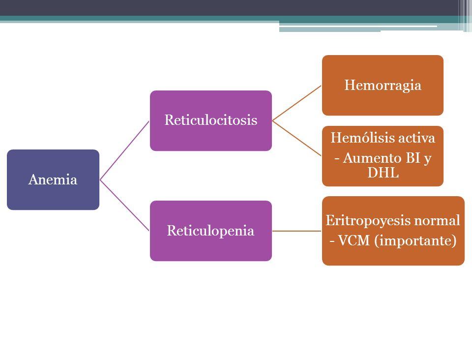 Anemia Reticulocitosis. Hemorragia. - Aumento BI y DHL. Hemólisis activa. Reticulopenia. Eritropoyesis normal.
