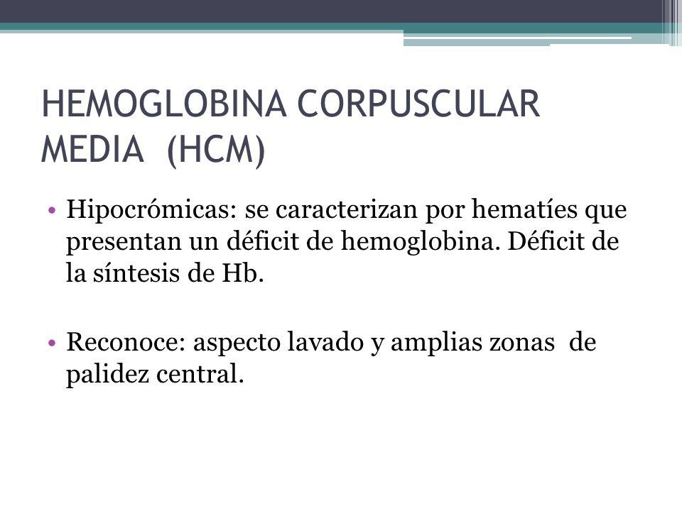 HEMOGLOBINA CORPUSCULAR MEDIA (HCM)