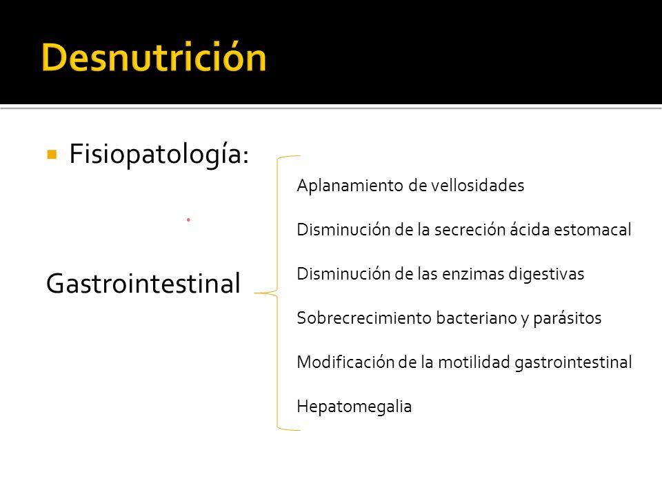 Desnutrición Fisiopatología: Gastrointestinal