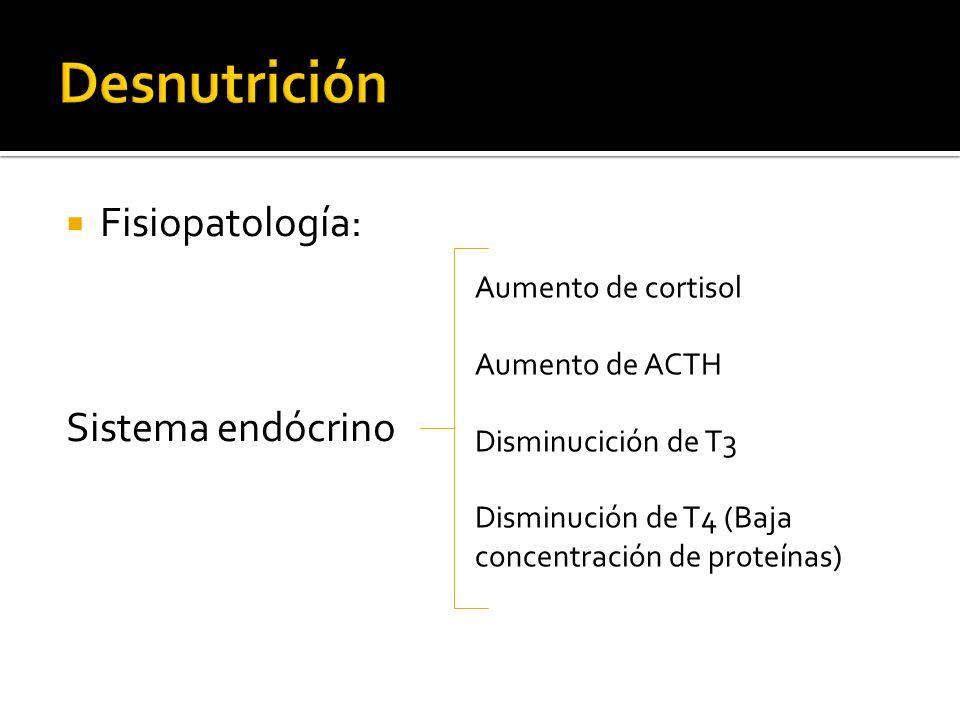 Desnutrición Fisiopatología: Sistema endócrino Aumento de cortisol