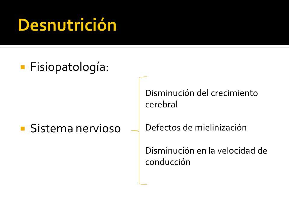 Desnutrición Fisiopatología: Sistema nervioso