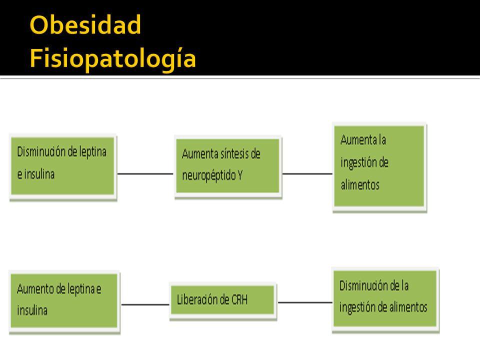 Obesidad Fisiopatología