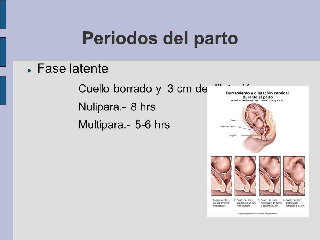 Periodos del parto Fase latente Cuello borrado y 3 cm de dilatación