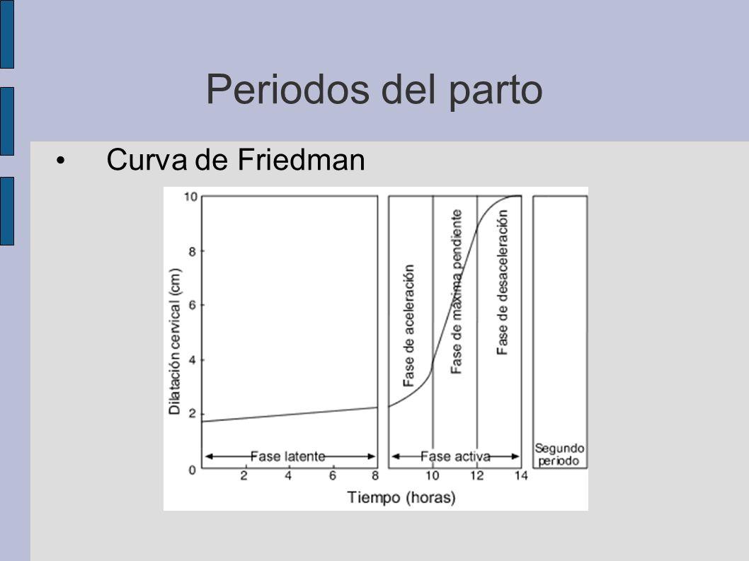 Periodos del parto Curva de Friedman