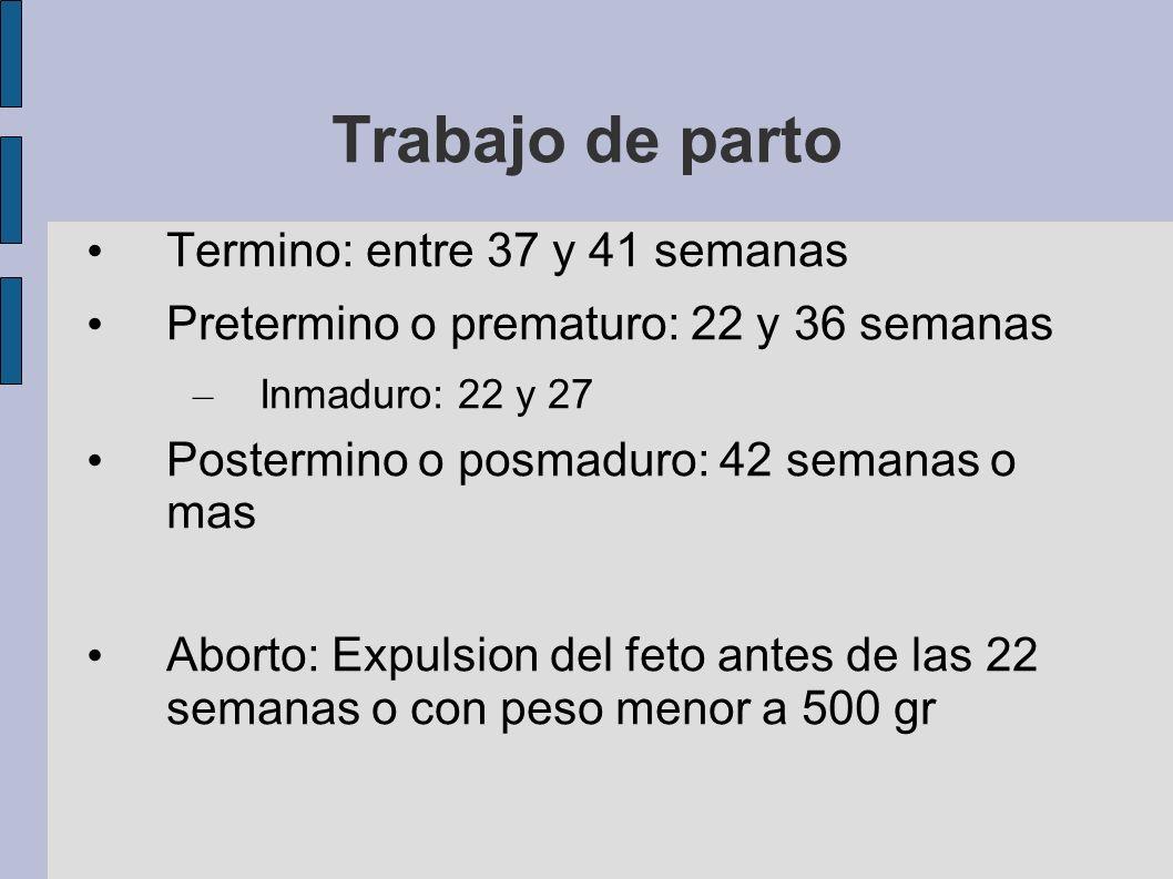 Trabajo de parto Termino: entre 37 y 41 semanas