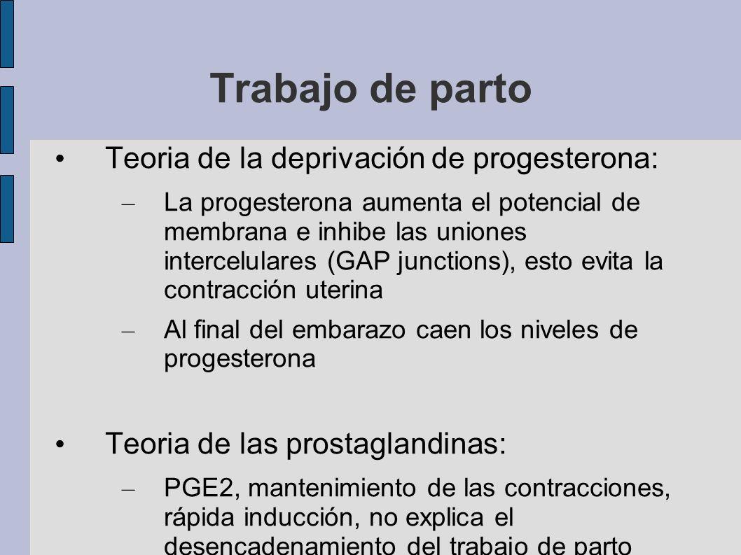 Trabajo de parto Teoria de la deprivación de progesterona: