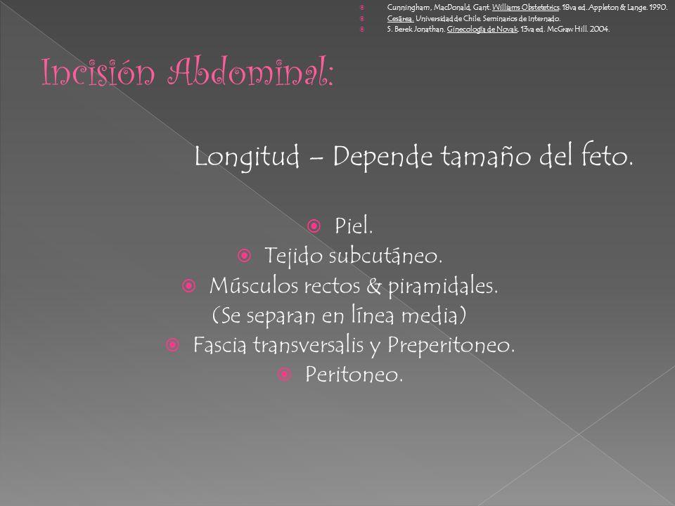 Incisión Abdominal: Longitud – Depende tamaño del feto. Piel.