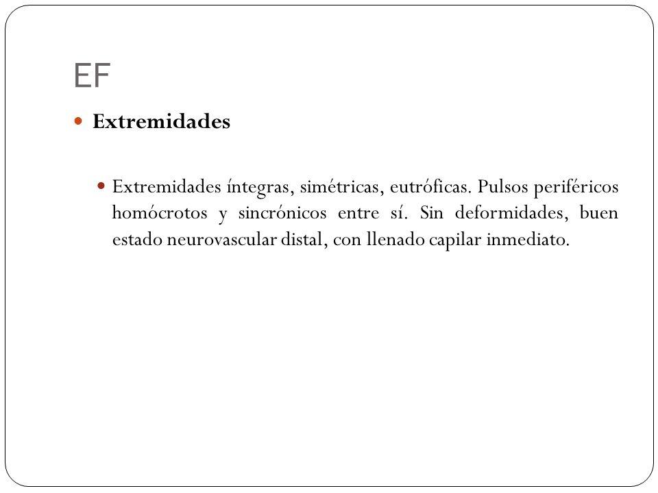 EF Extremidades.