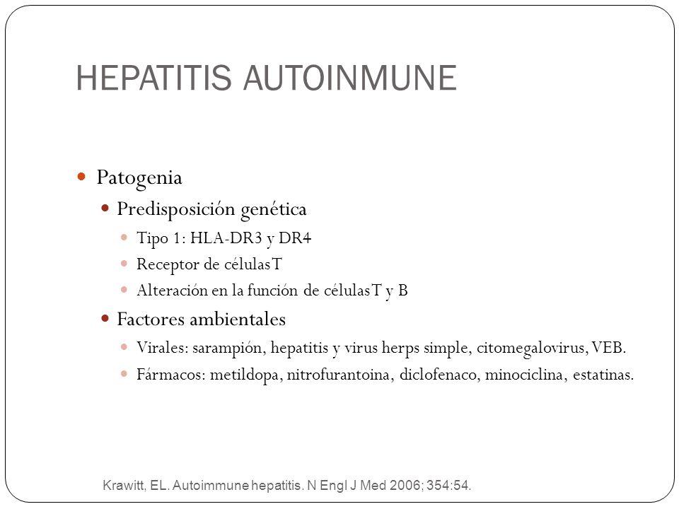 HEPATITIS AUTOINMUNE Patogenia Predisposición genética