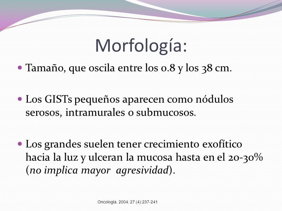 Morfología: Tamaño, que oscila entre los 0.8 y los 38 cm.