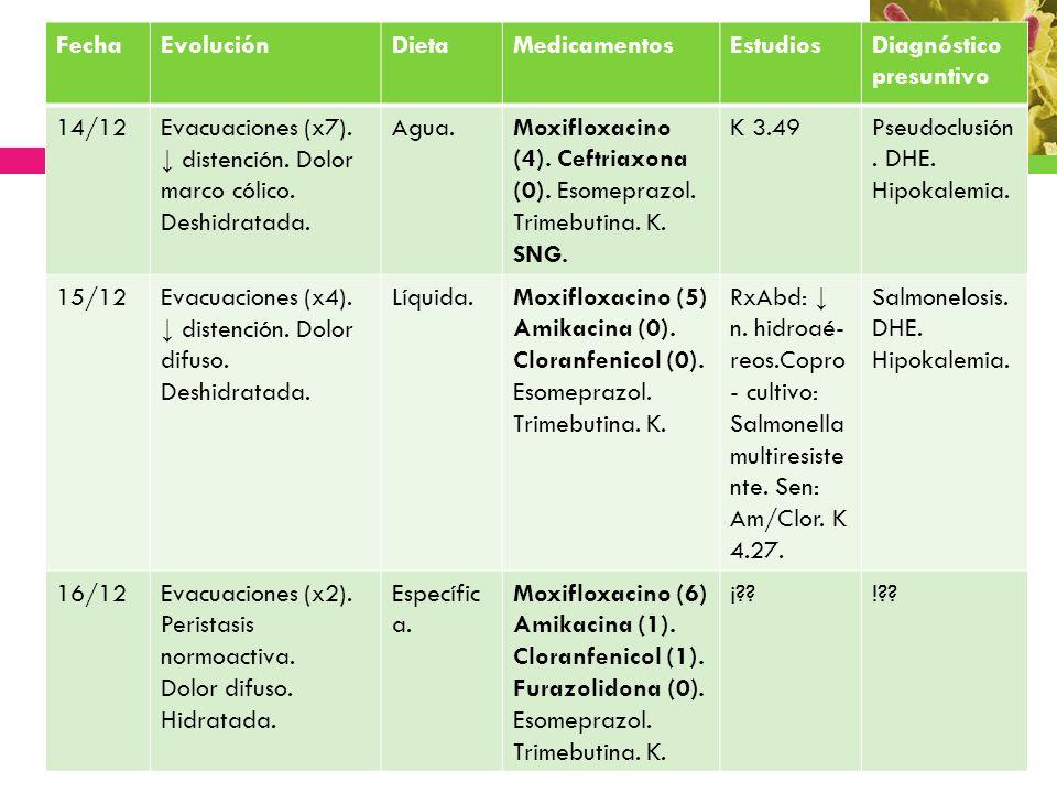 Fecha Evolución. Dieta. Medicamentos. Estudios. Diagnóstico presuntivo. 14/12.
