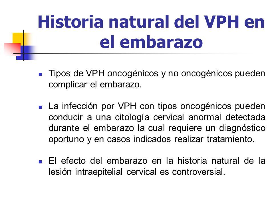 Historia natural del VPH en el embarazo