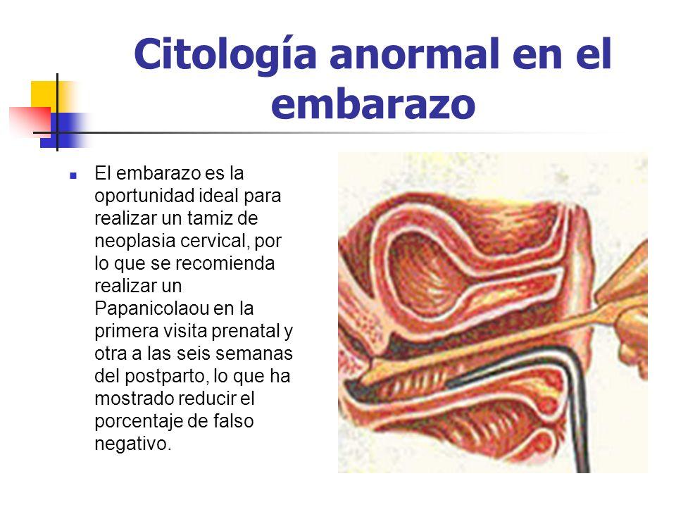 Citología anormal en el embarazo