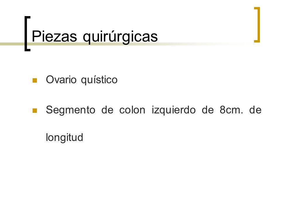 Piezas quirúrgicas Ovario quístico