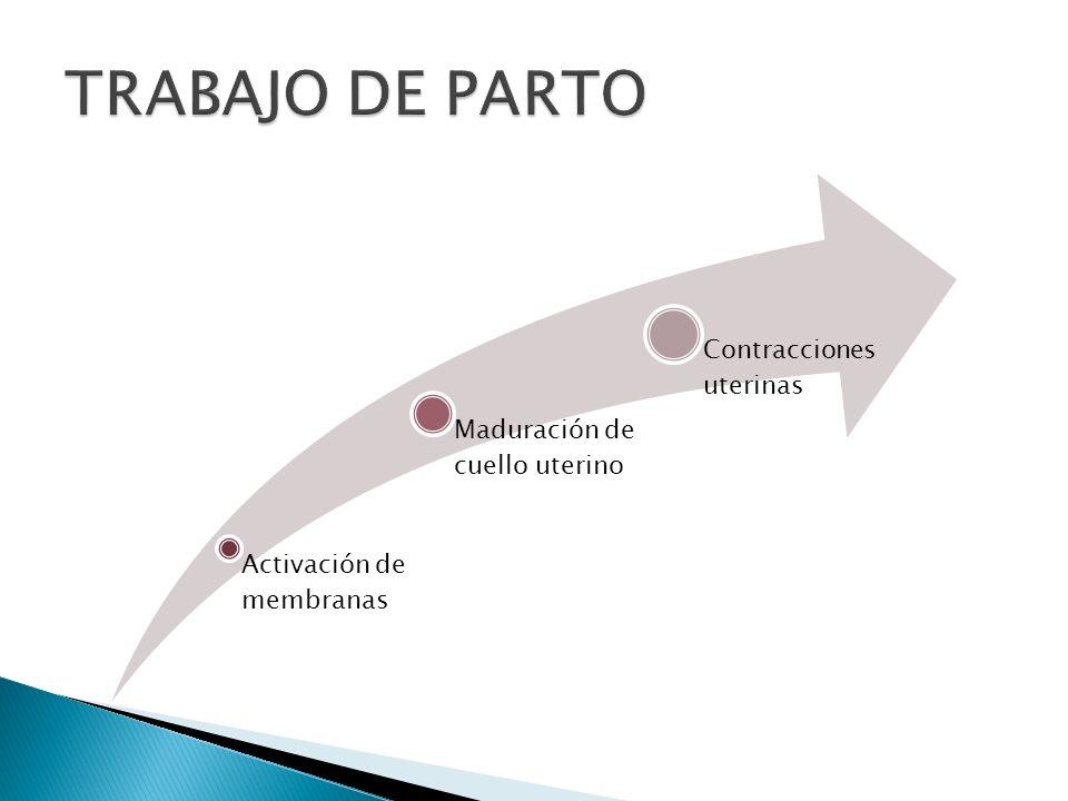 TRABAJO DE PARTO Activación de membranas Maduración de cuello uterino
