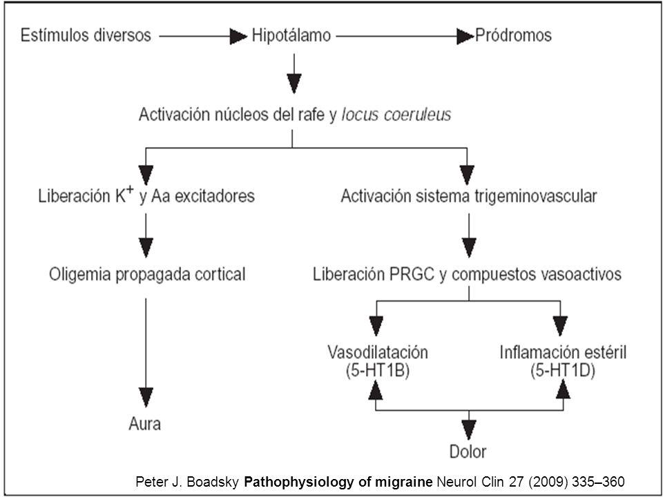 Peter J. Boadsky Pathophysiology of migraine Neurol Clin 27 (2009) 335–360