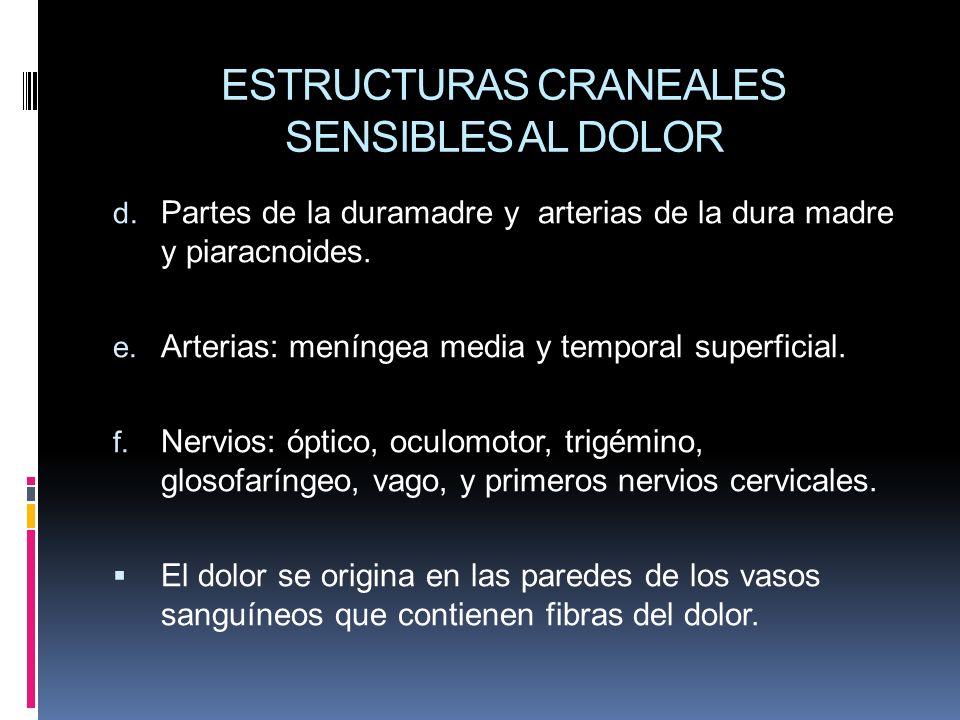 ESTRUCTURAS CRANEALES SENSIBLES AL DOLOR