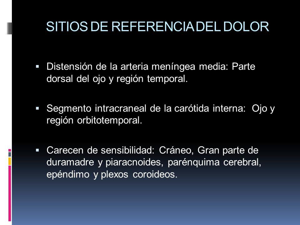 SITIOS DE REFERENCIA DEL DOLOR