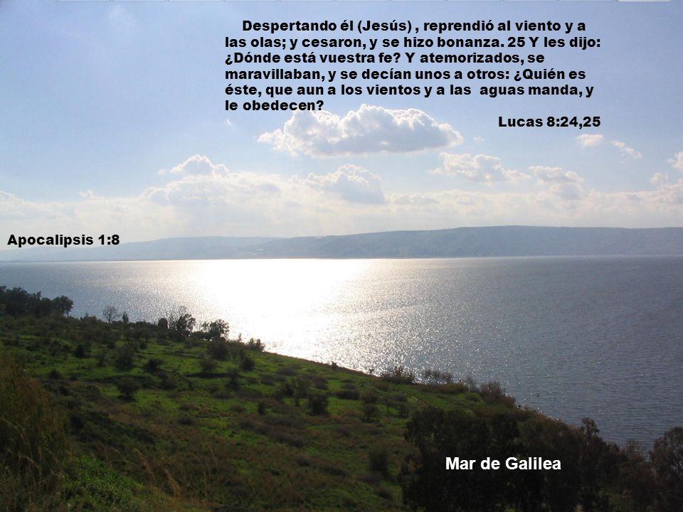 Despertando él (Jesús) , reprendió al viento y a las olas; y cesaron, y se hizo bonanza. 25 Y les dijo: ¿Dónde está vuestra fe Y atemorizados, se maravillaban, y se decían unos a otros: ¿Quién es éste, que aun a los vientos y a las aguas manda, y le obedecen