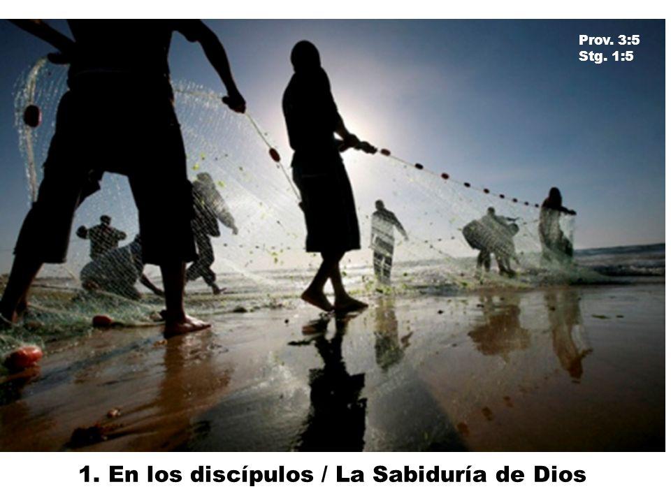 1. En los discípulos / La Sabiduría de Dios