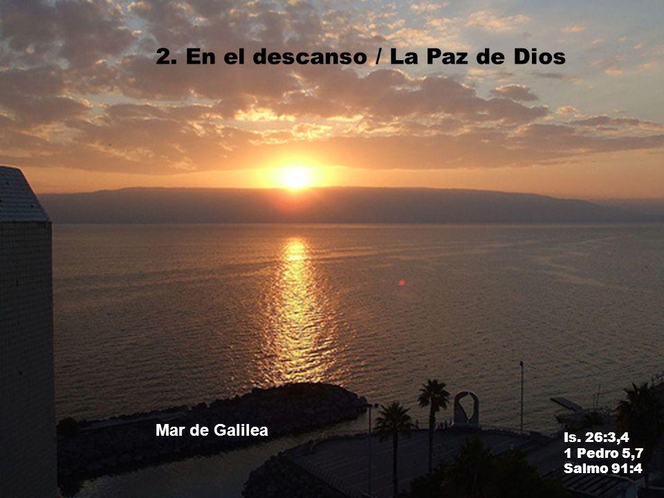 2. En el descanso / La Paz de Dios