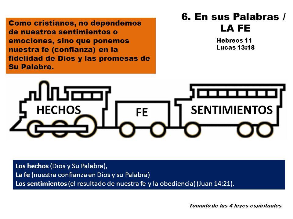 HECHOS SENTIMIENTOS FE 6. En sus Palabras / LA FE