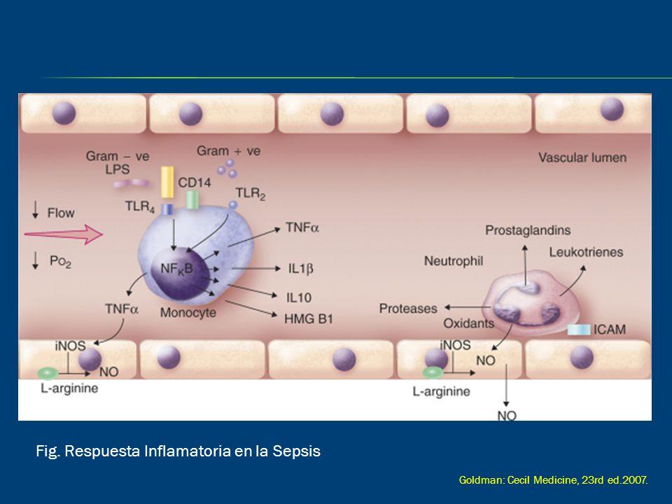 Fig. Respuesta Inflamatoria en la Sepsis