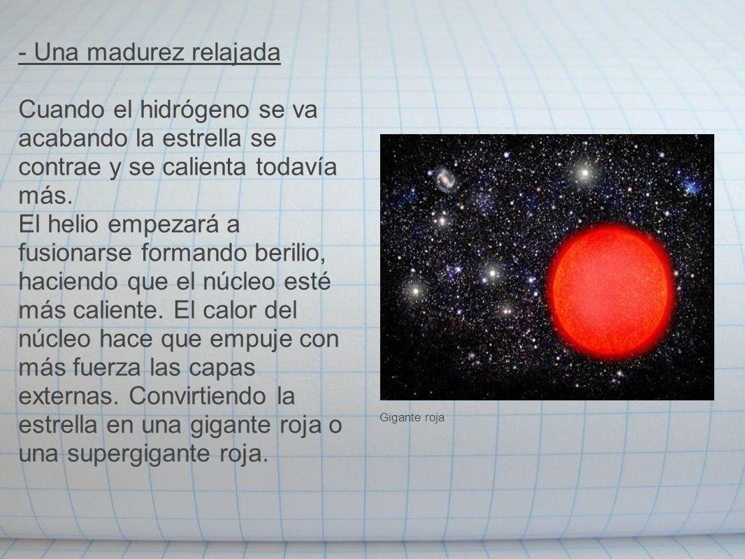 - Una madurez relajada Cuando el hidrógeno se va acabando la estrella se contrae y se calienta todavía más.