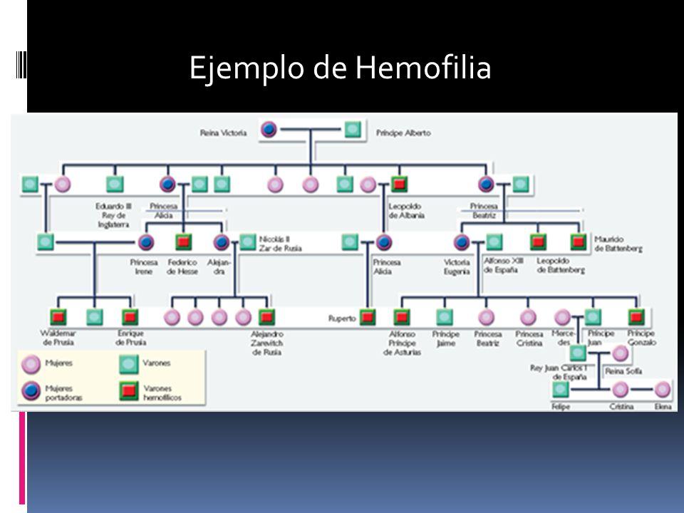 Ejemplo de Hemofilia