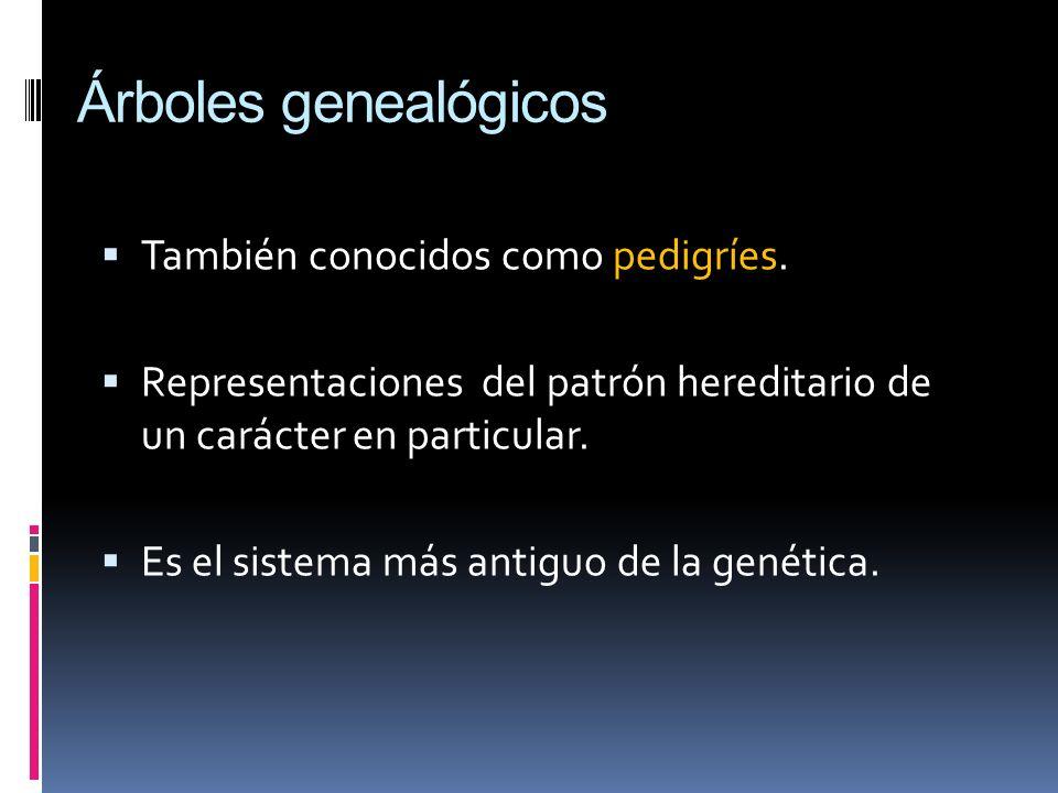 Árboles genealógicos También conocidos como pedigríes.